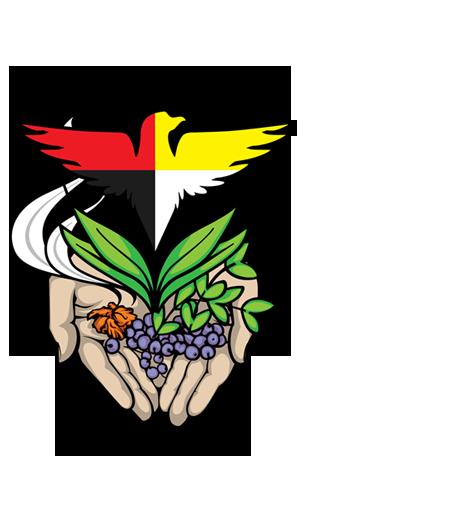 Aboriginal eMentoring BC